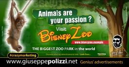 giuseppe polizzi crazymarketing Zoo Park genius  2018 advertising