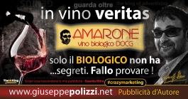 giuseppe polizzi pubblicità 2016 crazy marketing vino 2016