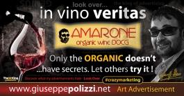 giuseppe polizzi pubblicità 2016 crazy marketing vino 2016 inglese